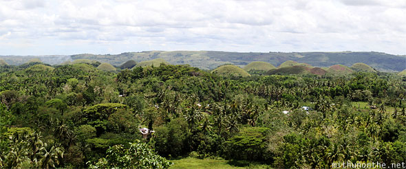 Chocolate Hills trees Bohol Philippines panorama