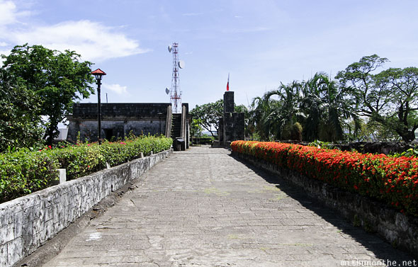 Fort San Pedro wall red flowers Cebu