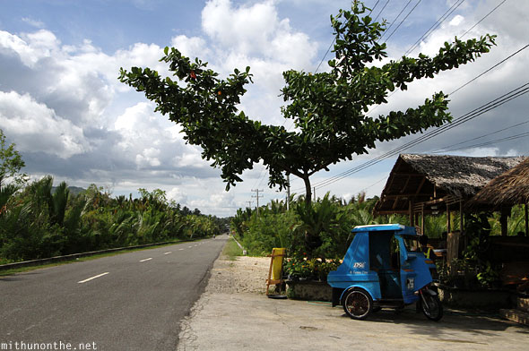 Bohol highway tarsier center Philippines