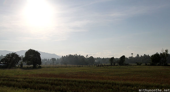Farm by highway Palawan morning