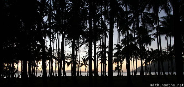 Las Cabanas trees silhouette sunset Palawan Philippines