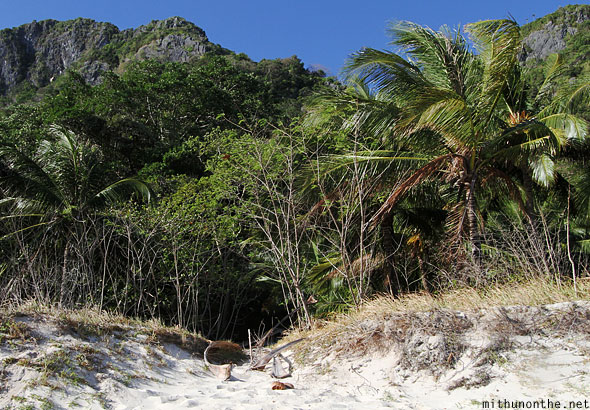 Seven commandos beach trees blowing El Nido Palawan Philippines