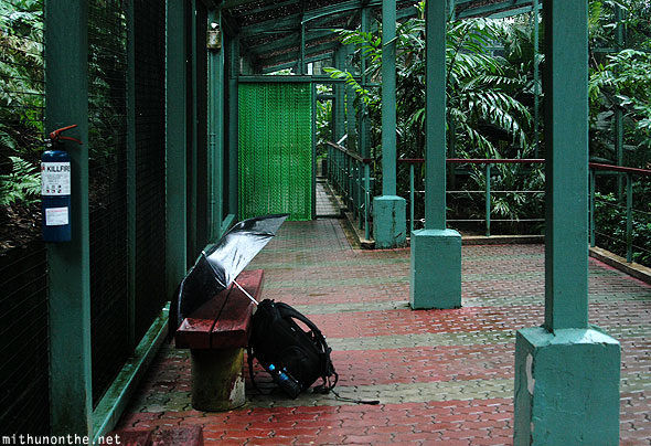 Bag umbrella Jurong bird park Singapore