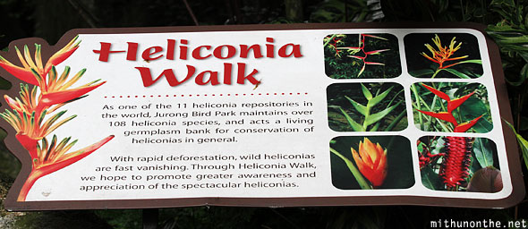 Heliconia walk sign Jurong Bird Park Singapore