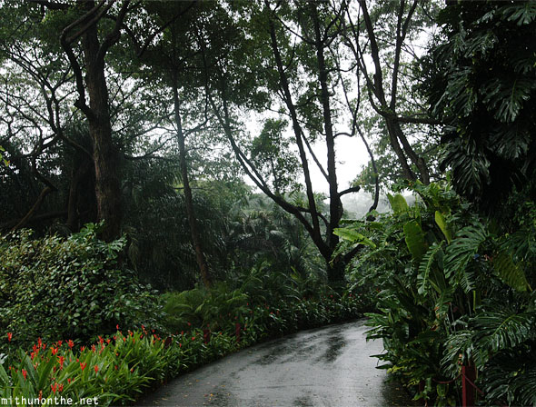 Jurong bird park after rain Singapore