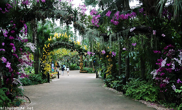 Jurong bird park flowers entrance