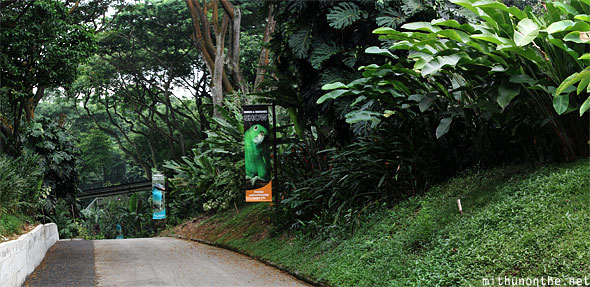 Jurong bird park walkway Singapore