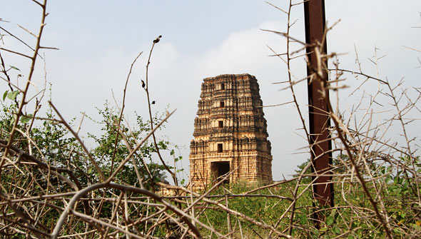 Madhavaraya temple through twigs