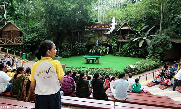 Pools amphitheatre Jurong bird park Singapore