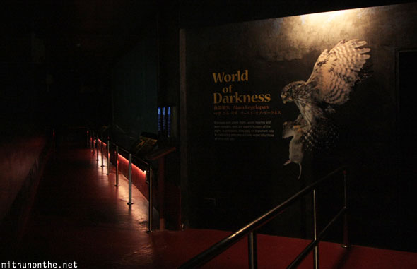 World of darkness hall Jurong bird park Singapore