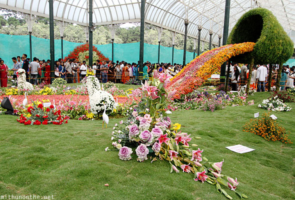Big attraction Republic Day flower show Lal Bagh