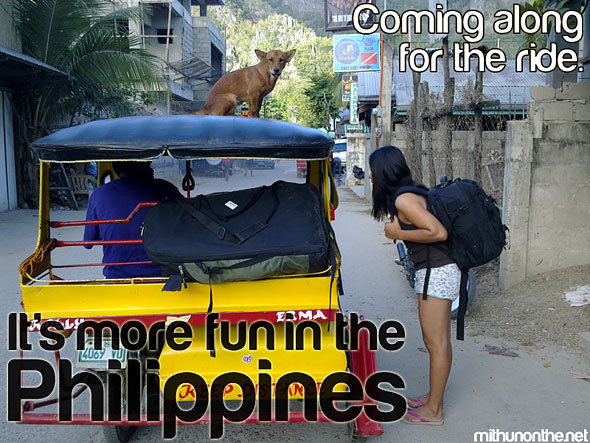 Dog on trike roof It's more fun in the Philippines