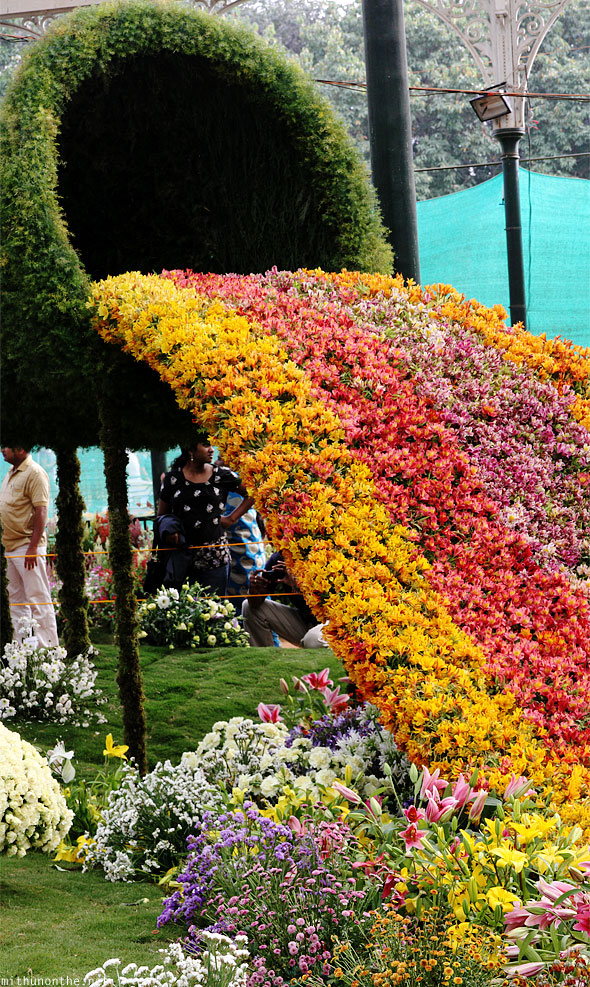 Flowers flowing design Lal Bagh Republic day show panorama