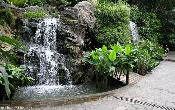 Ginger farm waterfall Singapore botanic gardens