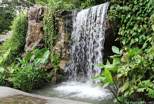 Ginger garden waterfall Singapore botanic park