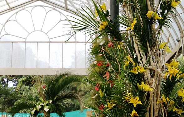 Lal Bagh glasshouse orchid display republic day flower show