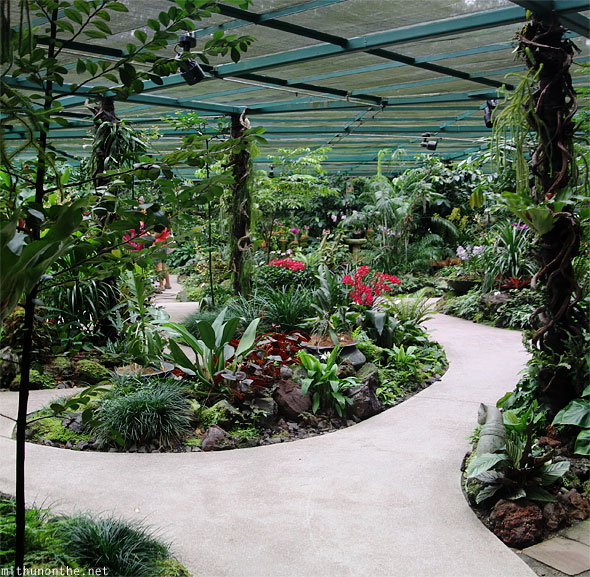 National orchid garden mist room panorama