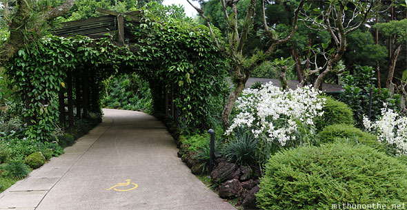 National orchid garden wheelchair path panorama
