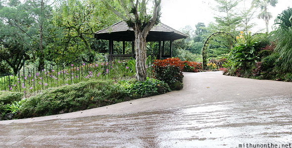 National orchid park Singapore panorama