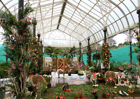 Orchid section Lal Bagh glasshouse flower show