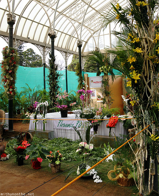 Orchids section Lal Bagh republic day flower show panorama