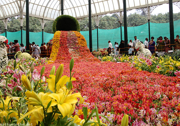 Pot flowing flowers display Lal Bagh Republic Day show Bangalore