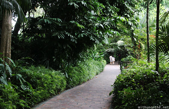Singapore botanic garden couple