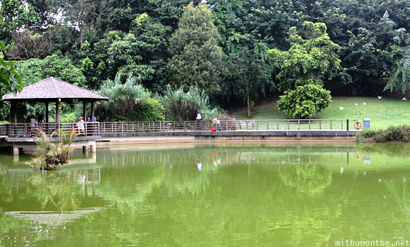 Singapore botanic garden echo lake