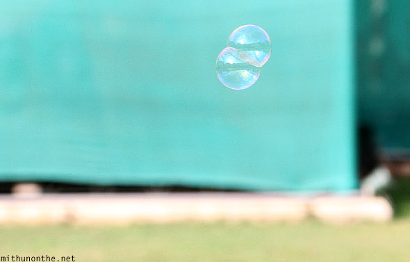 Soap bubble floating Lal Bagh Bangalore