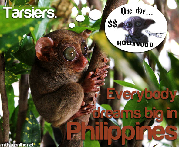 Tarsiers Dobby It's More Fun in the Philippines
