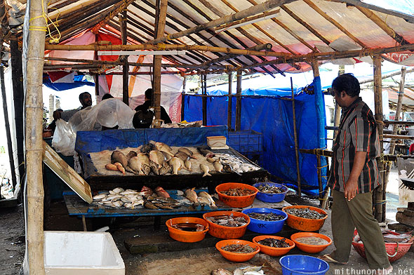 Fish stall vendor Fort Kochi Kerala