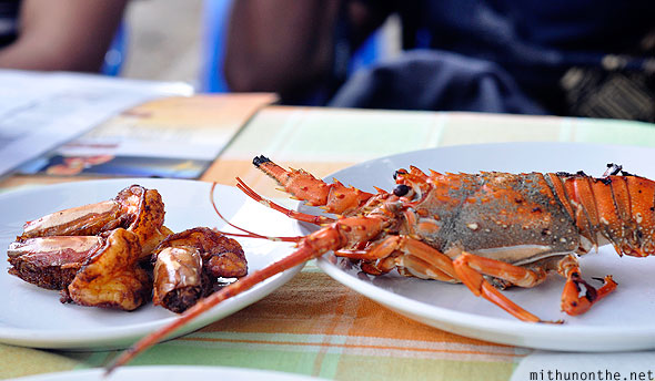 Grilled prawn lobster Fort Cochin Kerala India