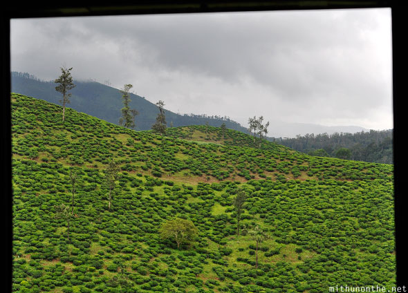 Idukki hills through bus door Kerala