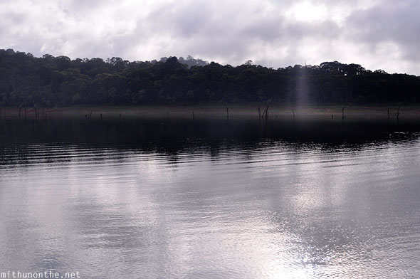 Periyar lake morning calm Thekkady Kerala