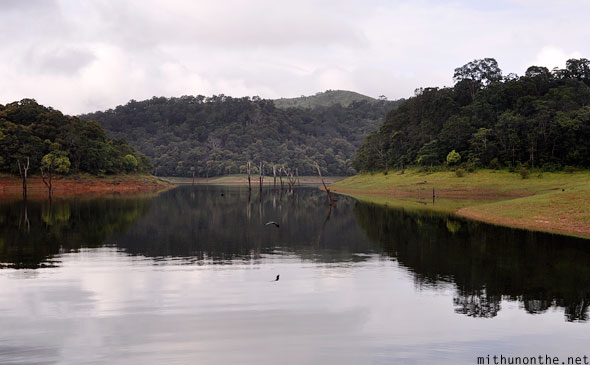 Periyar lake wildlife sanctuary Thekkady Idukki district