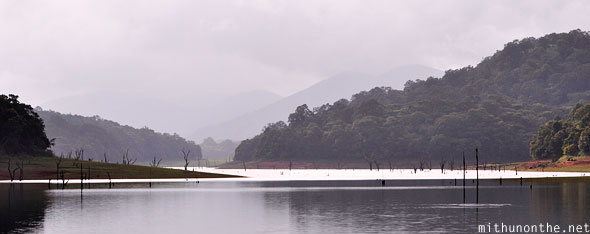 Periyar lake wildlife sanctuary Thekkady Kumli Kerala