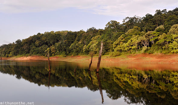 Thekkady Periyar lake reflection in water Kerala India