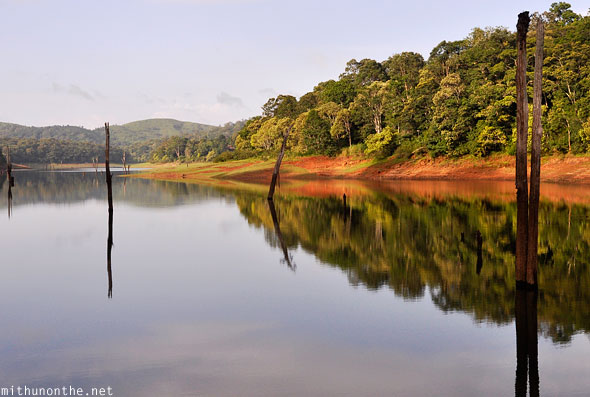Thekkady Periyar lake trees water Kerala India