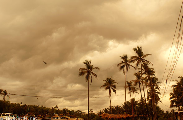 Sepia skies Anjuna Goa India