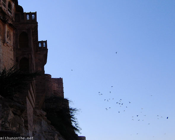 Mehrangarh Fort birds flying Jodhpur Rajasthan