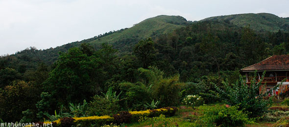 Palace Estate homestay Thadiyandamol Coorg