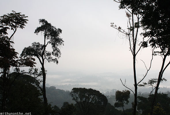 View from Thadiyandamol hill Coorg