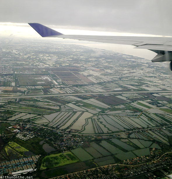 Bangkok fields in the morning