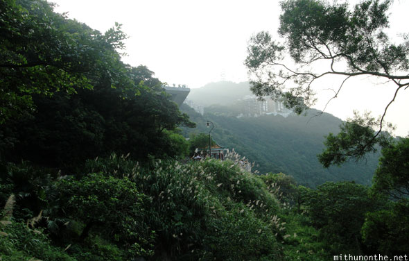 Victoria peak hill Hong Kong