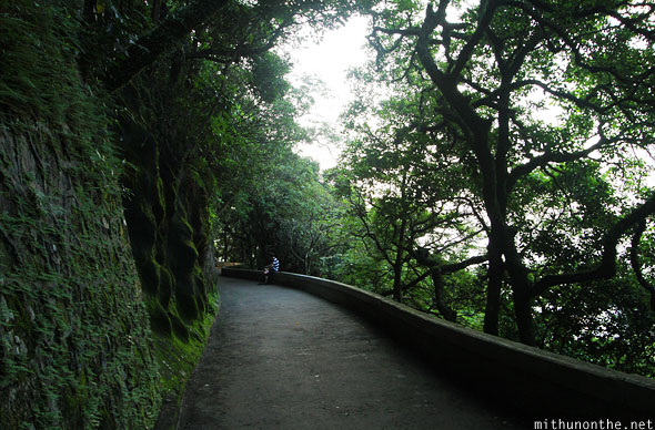Victoria peak walking path Hong Kong