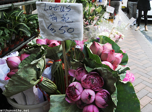Lotus flower market Hong Kong