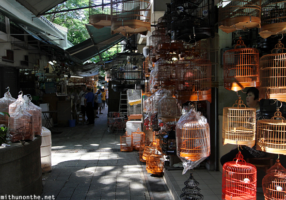 Bird market cages Hong Kong