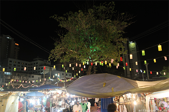 Chiang Mai night market tree Thailand