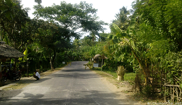 Donsol village road