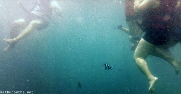 Swimming in sea Coron Philippines